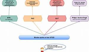 Bts Après Bac Sti2d : que faire apr s un bac sti2d les fili res et m tiers envisageables ~ Medecine-chirurgie-esthetiques.com Avis de Voitures