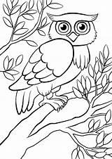 Owl Tree Sitting Uil Coloring Hibou Kleurplaten Bos Uilzitting Vriendelijke Leuke Boom Mignon Nette Arbre Dans Gufo Forest Albero Siede sketch template