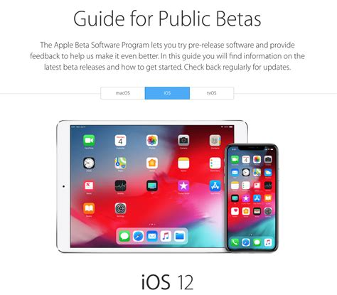 how to install ios 12 beta on iphone and