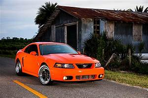 2004 Ford Mustang Svt Cobra Orange 015 - Photo 136426035 - Jeff Smith seeks the 9s with his ...
