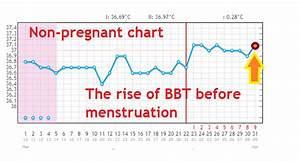 Why Is Bbt Rising After Ovulation   Pregnant Charts