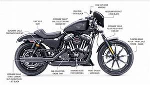 Diagrams Wiring   Harley Davidson Softail Wiring Diagram