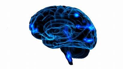 Ai Human Planet Technology Brain Trust Founder