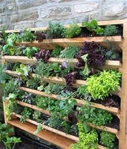 les 25 meilleures idees de la categorie jardin potager sur With amenagement petit jardin avec terrasse 2 petit jardin et ses fruits jardin potager jardineries