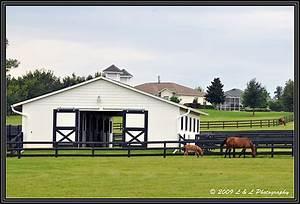 Ocala, Central Florida & Beyond: Small horse farm