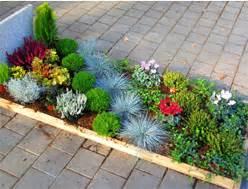 Balkonpflanzen Sonnig Pflegeleicht : pflanzen kaufen balkonpflanzen zimmerpflanzen steingartenpflanzen ~ Frokenaadalensverden.com Haus und Dekorationen