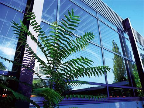 Garten Mieten In Freiburg by Mensa Garten In Freiburg Mieten Rentaclub Org