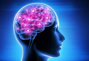 What Are Cbd U2019s Effects On The Brain