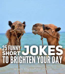 funny short jokes  brighten  day short jokes