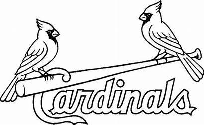 Coloring Pages Cardinals Louis St Baseball Cardinal