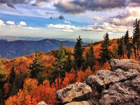 Dolly Sods Wilderness - Hiking