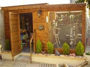 Fabrication D Une Voliere Exterieur : peut on mettre tous les types d 39 oiseaux ensemble blog ~ Premium-room.com Idées de Décoration