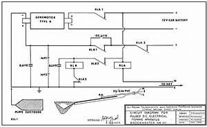 Fish Shocker Schematic Diagram Engine Diagram And Wiring