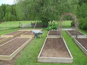 Backyard garden house design with diy wood raised bed for Wood for raised bed vegetable garden