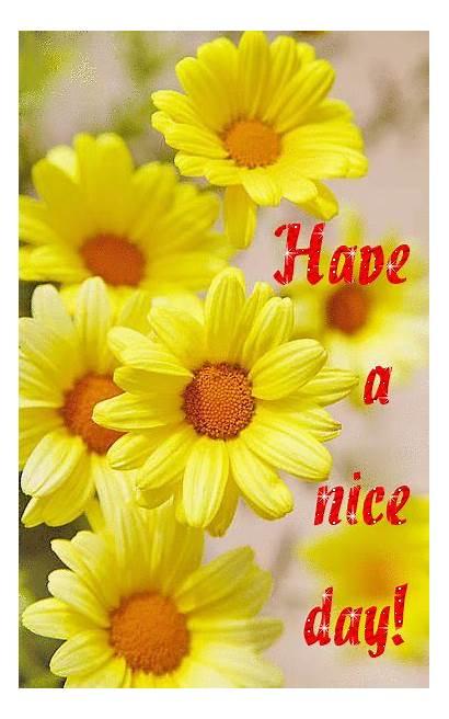 Nice Flowers Yellow Myniceprofile