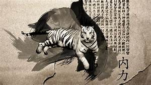 chinese white tiger by peterl92 on DeviantArt