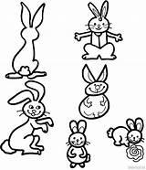 Cute Coloring Bunny Pages Rabbits Rabbit Widgets Amazon sketch template