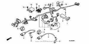 Wire Harness For 2008 Honda Cb250 Cb250  Two Fifty