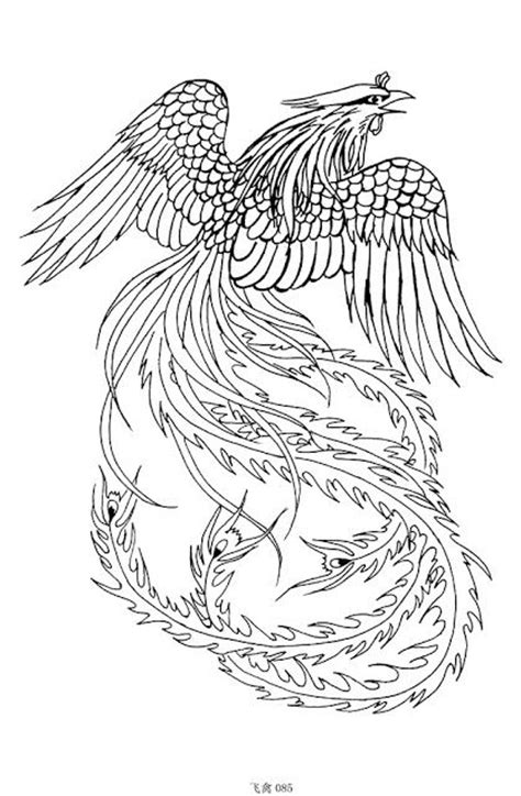 Latest phoenix tattoos Design 2012 ~ tattoogallery1 (With images)   Phoenix tattoo design