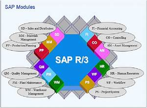 List Of Sap Modules  Introduction To Sap And The Diverse