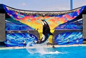 File:SeaWorld San Diego5