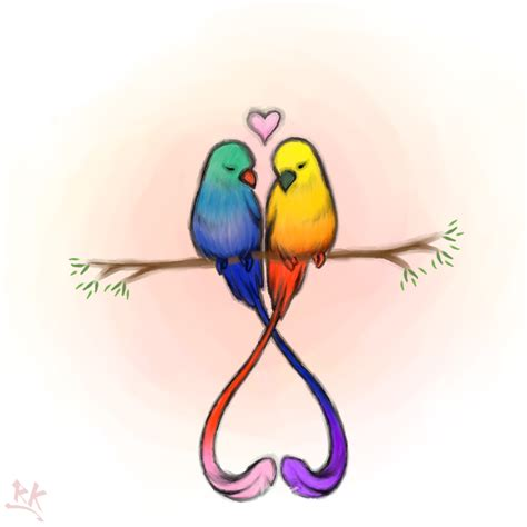 love bird drawings  color amazing wallpapers