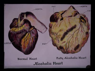effects  alcohol  cigarettes lantern