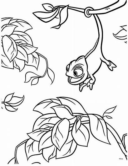 Tangled Coloring Pages Pascal Rapunzel Chameleon Disney