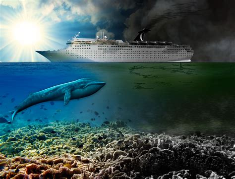 31 Luxury Cruise Ship Pollution | Fitbudha.com
