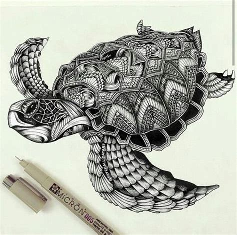 turtle zentangle pattern  art tatoo art dessin