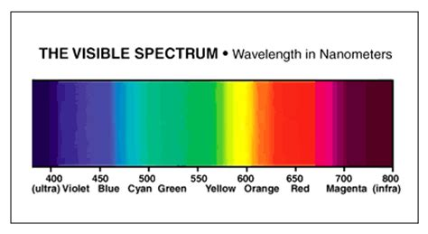 blue light wavelength fish tank lighting sunlite science and technology