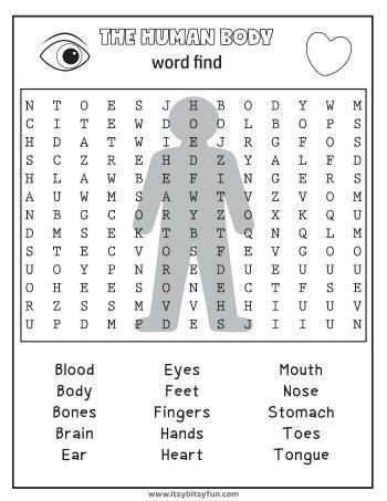 human body worksheets itsybitsyfuncom