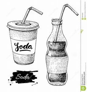 Vector Soda Drawing. Hand Drawn Soda Illustrations. Stock ...