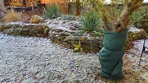 Pflanzen Für Teichumrandung : winterschutz f r pflanzen tipps von anja koenzen ~ Michelbontemps.com Haus und Dekorationen