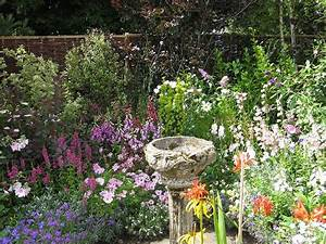3345 best images about Gardening on Pinterest