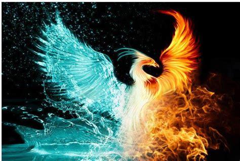phoenix rising - American Intelligence Media