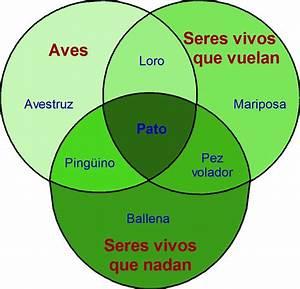 Aprendiendo 3 Veces   U00bfque Es Un Diagrama De Venn