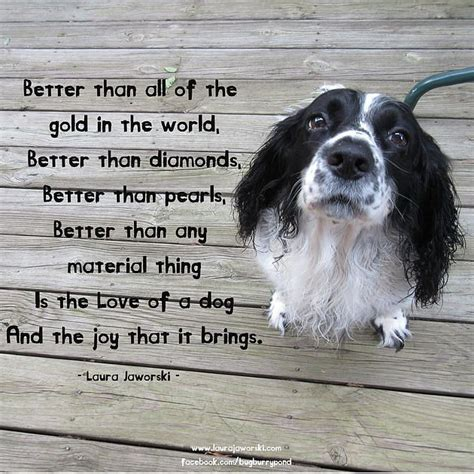 pet quotes poems  sayings images
