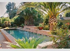 Amazing Outdoor Artificial Palm Trees Decorating Ideas