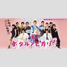 Hotaru No Hikari It's Only Little Light In My Life Season 2 Asianwiki
