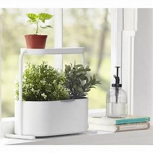 Jardiniere Interieur : mini jardiniere d interieur aromatiques metal blanc umbra ~ Melissatoandfro.com Idées de Décoration