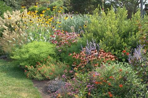 Lowmaintenance Planting Design More Than Just Plant