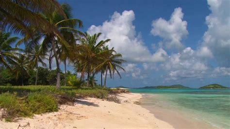 beautiful tobago cays beach scene filmed
