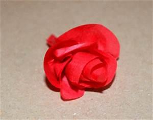 Rosen Aus Seidenpapier : rosen aus seidenpapier basteln ~ Lizthompson.info Haus und Dekorationen