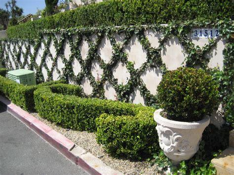 cape designs garden estate european garden design