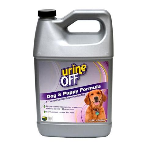 Urine On Hardwood Floors Odor by Urine Odor Stain Remover Cat Formula S