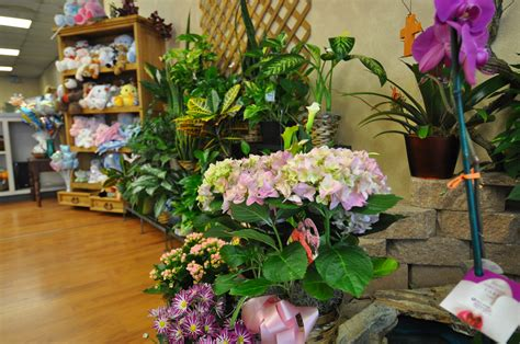 Flower Vases Near Me by Peoples Flower Shops Downtown Location Coupons Near Me In