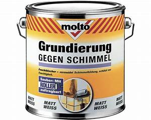 Mittel Gegen Wandschimmel : anti schimmel wandfarbe ea34 hitoiro ~ Whattoseeinmadrid.com Haus und Dekorationen