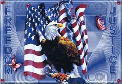 Eagle Flag Patriotic Bald America American Airwolf