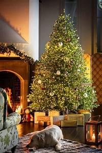 Weihnachtsbaum Wasser Geben : ein k nstlicher weihnachtsbaum und 40 weitere dekoideen f r ihr zuhause wohnideen und dekoration ~ Bigdaddyawards.com Haus und Dekorationen
